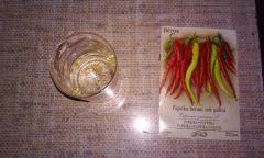 Papryczka Barani Róg - Growlog