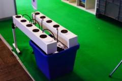 Cannafest Praga 2015 systemy hydro