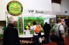 Vip Seeds Maya Cannafest 2015 Praga