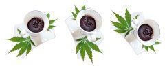 Cannabis Quick Cookie   Szybkie konopne ciastko Z mikrofali kolaż