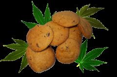 Szybkie ciasteczka konopne   Speed Cannabis Cookie