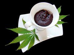 Cannabis Quick Cookie   Szybkie konopne ciastko Z mikrofali