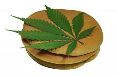 Cannabis PANCAKE  nalesniczki z jagodami, czekolada I masłem konopnym