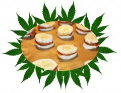 Cannabis chocolates - Czekoladki konopne - wersja fit