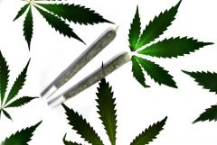 Cannabis Box joints Pot list