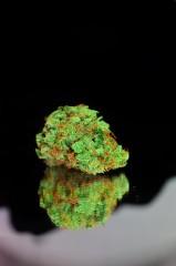 Art weed