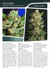 Advanced seeds page 017