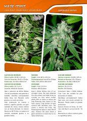 Advanced seeds page 015