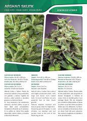 Advanced seeds page 010
