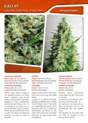 Advanced seeds page 019