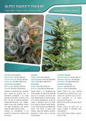 Advanced seeds page 008