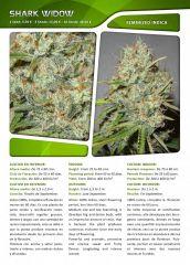 Advanced seeds page 021