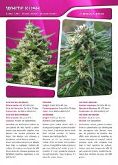 Advanced seeds page 023
