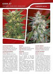 Advanced seeds page 020