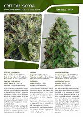 Advanced seeds page 012