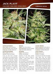 Advanced seeds page 018