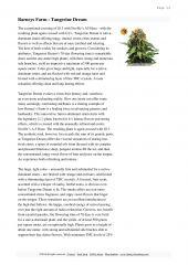 barneys farm catalog page 028