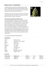 barneys farm catalog page 038