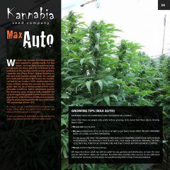 kannabia catalog english (1) page 034