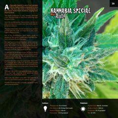 kannabia catalog english (1) page 038