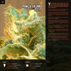 kannabia_catalog_english (1)-page-041.jpg
