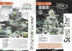 paradise seeds katalog polski page 010