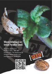 paradise seeds katalog polski page 019