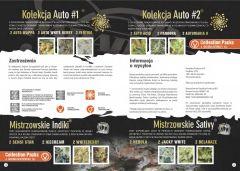 paradise seeds katalog polski page 017