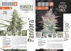 paradise seeds katalog polski page 016