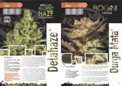 paradise seeds katalog polski page 005