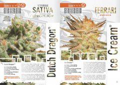 paradise seeds katalog polski page 006