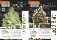 paradise seeds katalog polski page 007