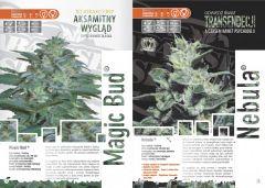 paradise seeds katalog polski page 008