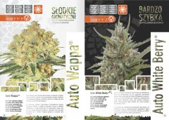 paradise seeds katalog polski page 015