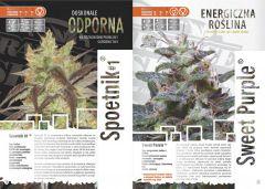 paradise seeds katalog polski page 011