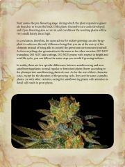 growers guide autoflowering plants (1) page 004