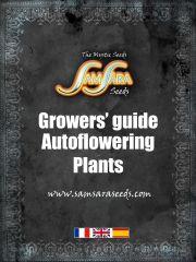 Autoflowering   Plants  Grower guide