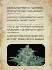 growers guide autoflowering plants (1) page 010