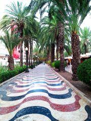 Alicante psychedelic aleja