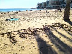 trawka Na plaży