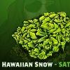 hawaiiansnow.jpg
