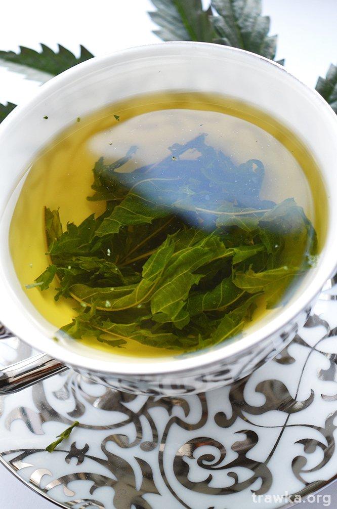 hemp tea
