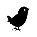 Black.Bird