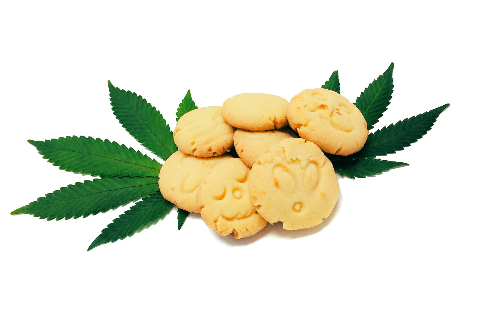 cannabis cookie.jpg