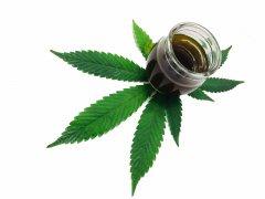 krem do twarzy z marihuany
