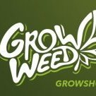 GROWWEED.PL