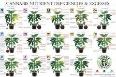 420-magazine-mobile1524842387.jpg