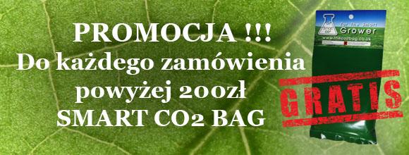 5ab9087775f77_Freeco2.jpg.538329a854278a1391067372582806fc.jpg