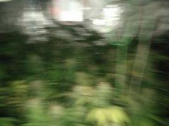 IMG_20180310_192834.jpg