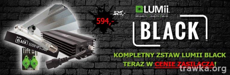 large.zestaw_lumii_black_elektronik.jpg.f9fa5f76e8f691765bd67791e6197ffc.jpg